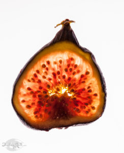 Slice of fig