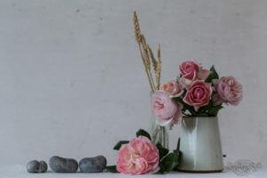 High Summer Roses