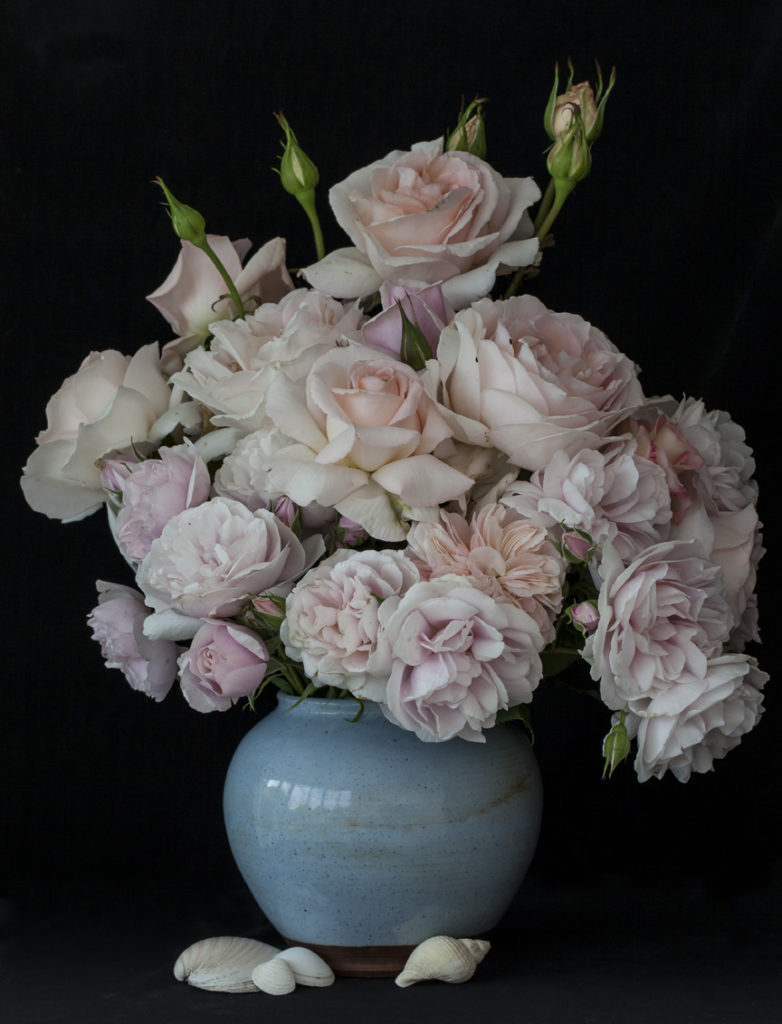 Pink Roses with Shells