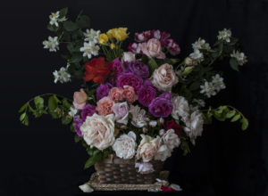 Roses in a Basket (after Rachel Ruysch)