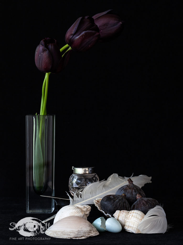 Still Life with Black Tulips