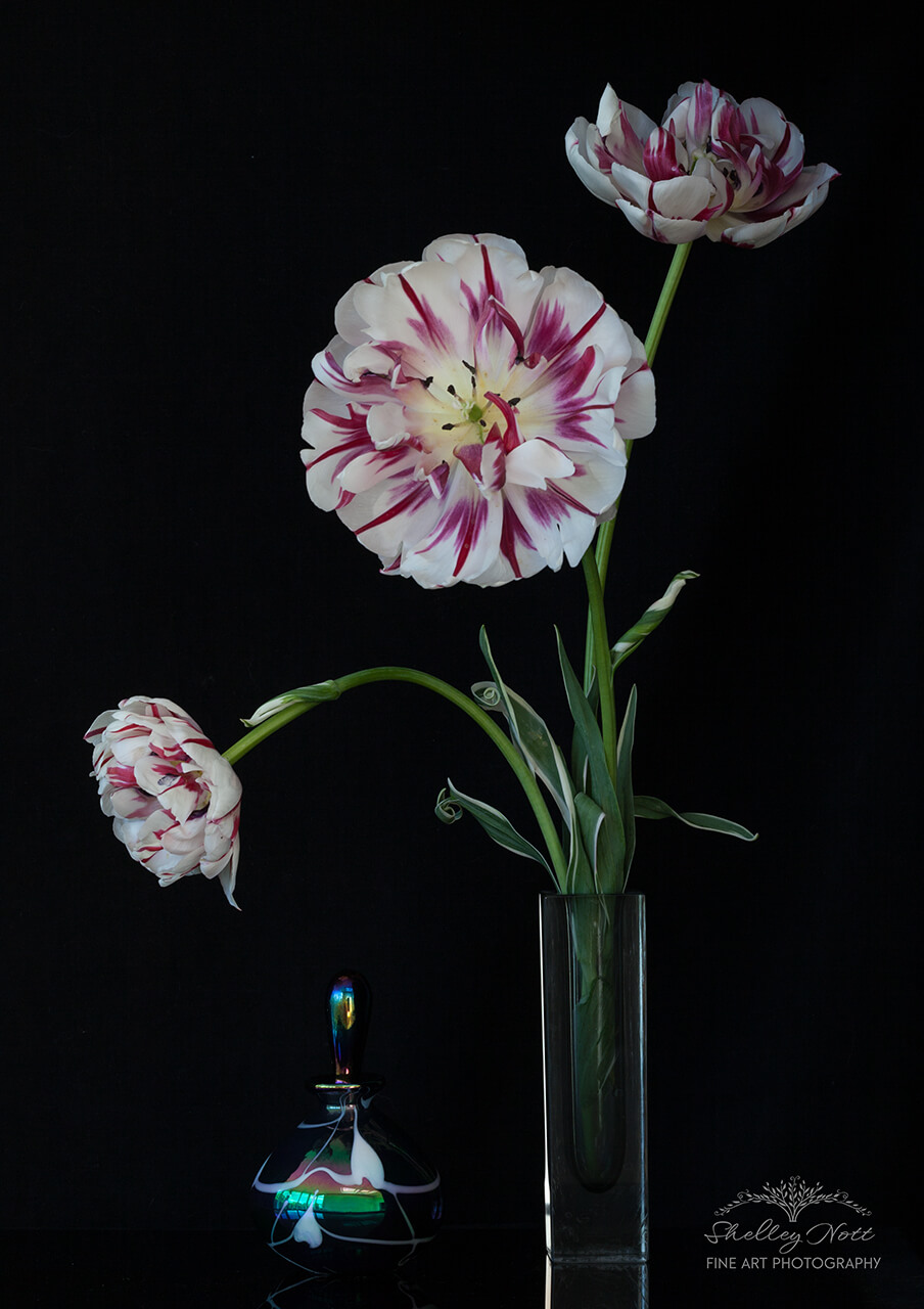 Tulip with Perfume Bottle